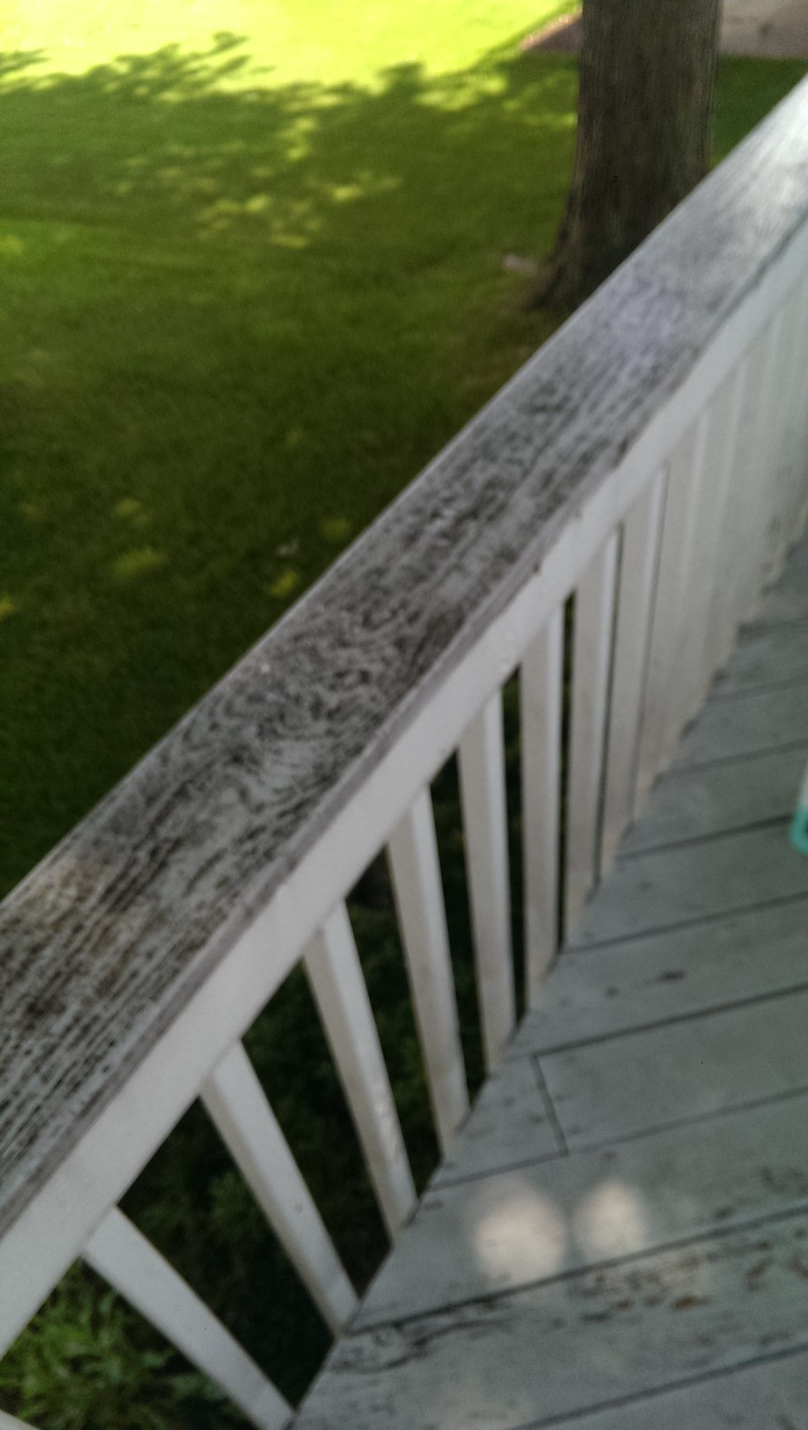 Power Washing (before, close up) -