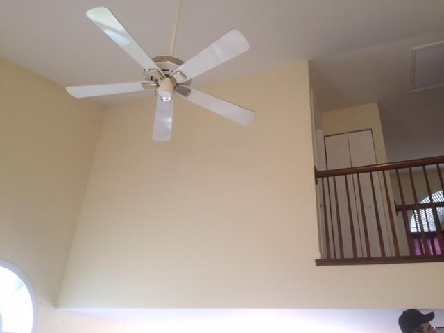 Custom Painting (finished ceiling) -