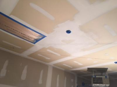 New Ceiling (in progress)