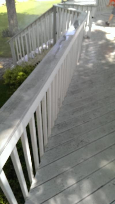 Power Washing (before)